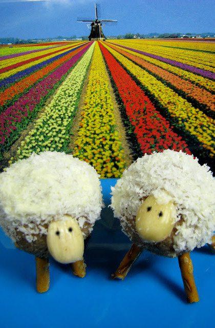 Owieczki, czyli Trufle z Kokosem i Tofu