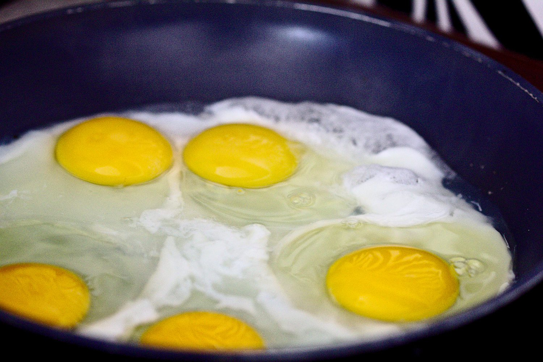 jajkosadzonenawodzie