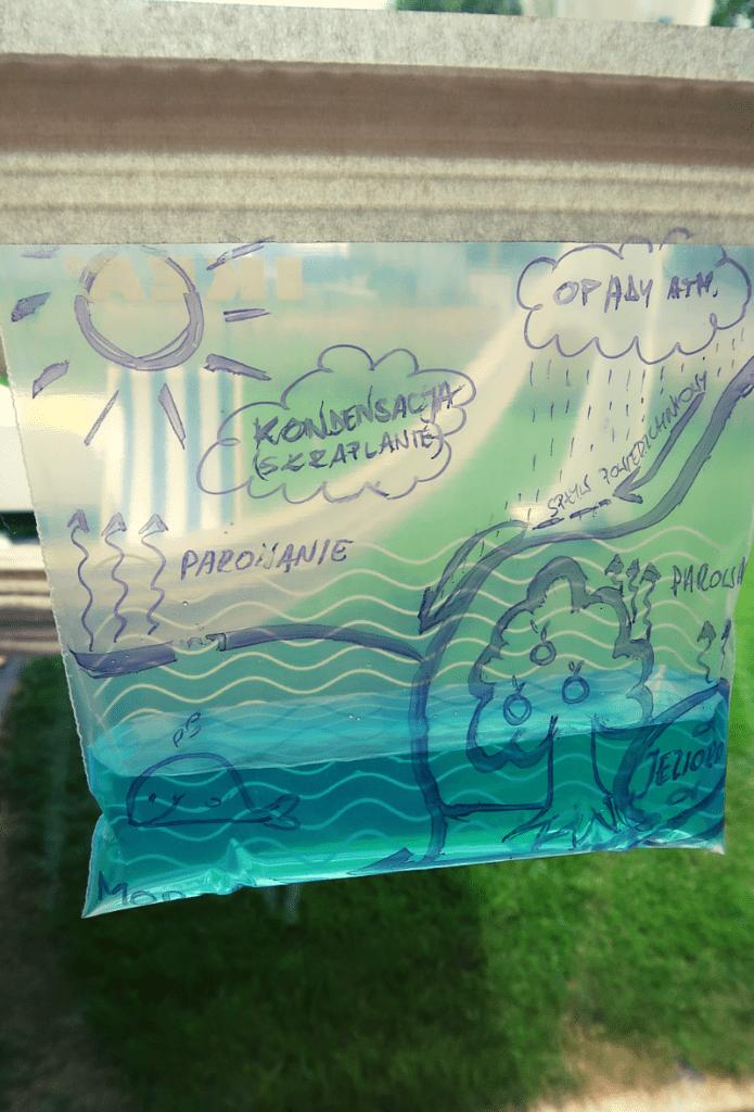 Obieg Wody w Przyrodzie – Eksperyment dla Dzieci